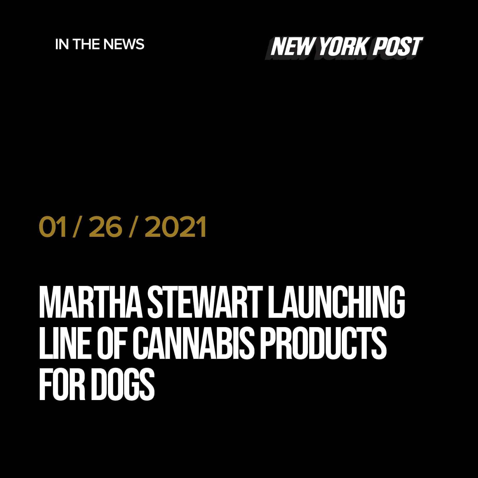 Martha Stewart launching line of cannabis products for dogs