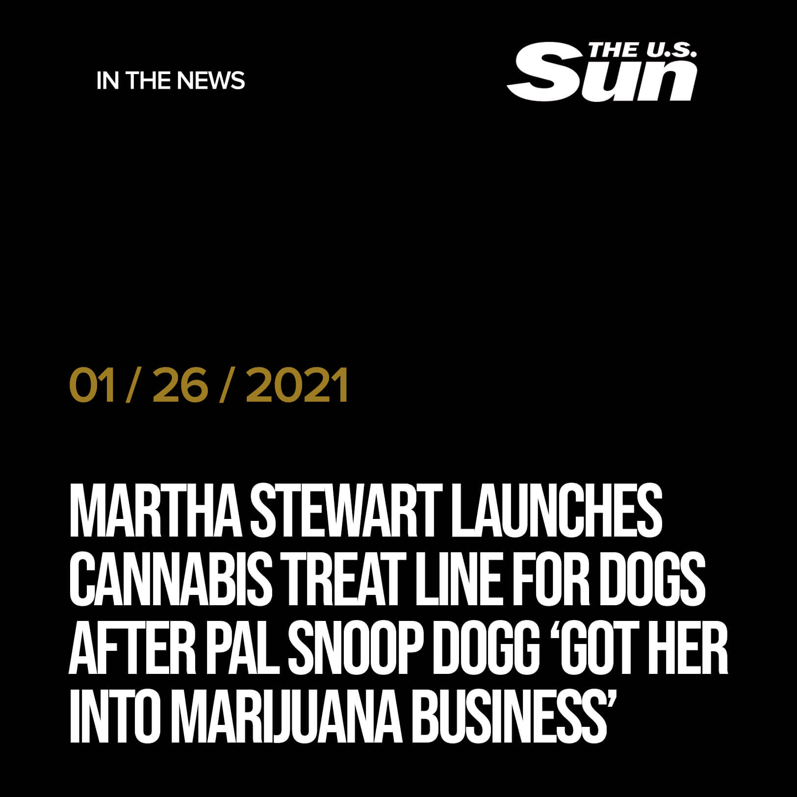 Martha Stewart launches cannabis treat line for DOGS after pal Snoop Dogg 'got her into marijuana business'