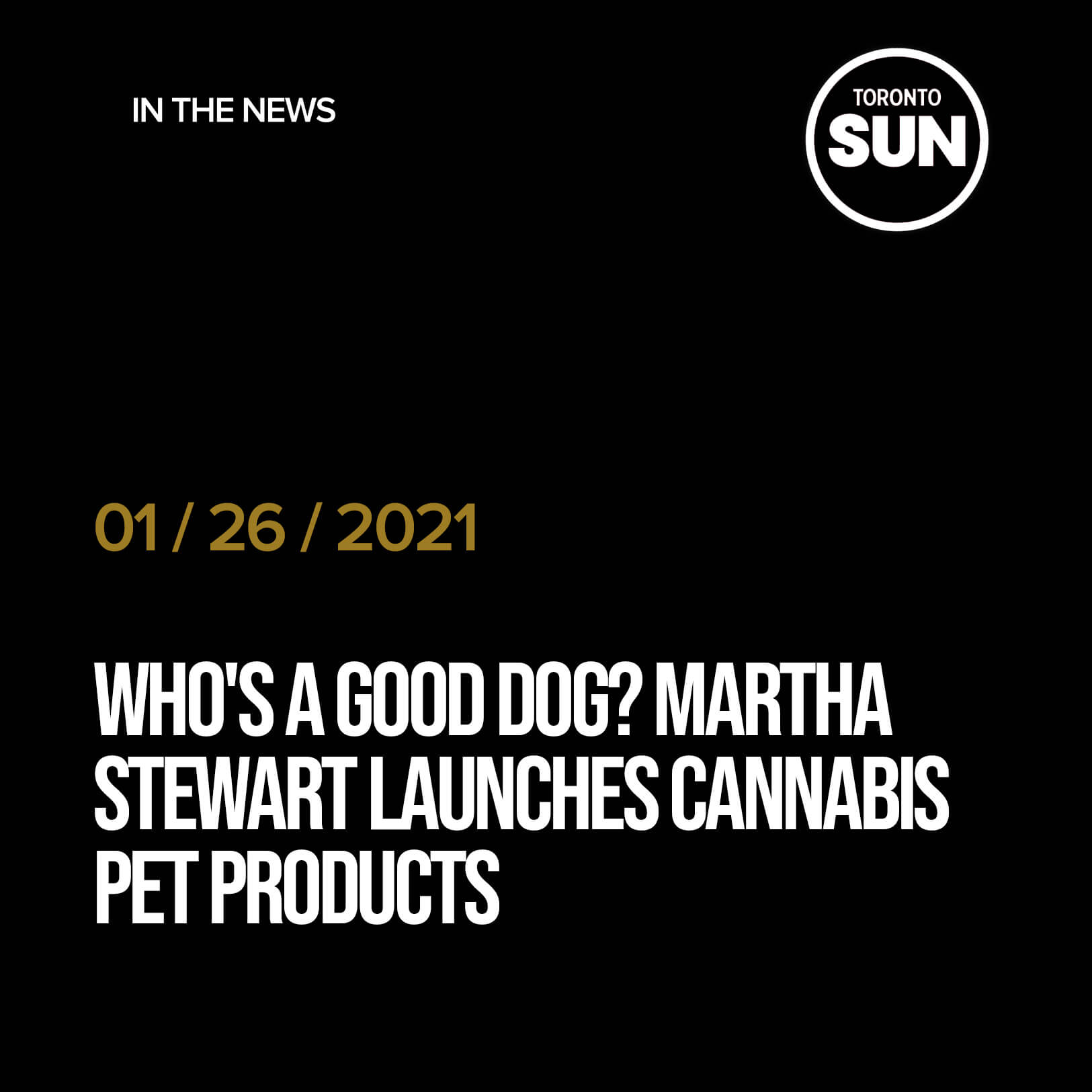 WHO'S A GOOD DOG? Martha Stewart launches cannabis pet products